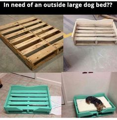 Great Dane bed