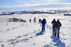 Trekking con raquetas de nieve. Laponia noruega / Snowshoeing in Northern Noray