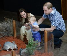 8 month oil: April 20, 2014 at Taronga Zoo  in Sydney, Australia