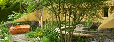 Get Well Soon Garden @ RHS Chelsea Flower Show
