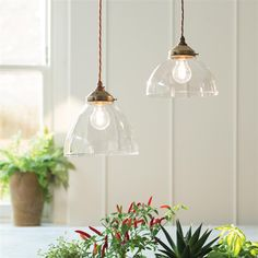 Shotley Glass Pendant Light in Antiqued Brass
