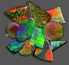Ammolite - Mined in Alberta, Canada, Ammolite was recognized by the International Colored Gemstone Commission (ICGC) in 1981 as a new organic gemstone and is considered the rarest gemstone in the world.