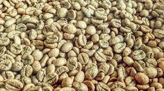 Coffe Coffe by rachmanmaulana on Creative Market