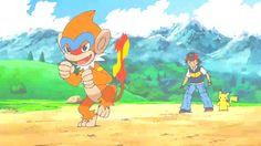 Chimchar evolved into Monferno (Evolving Strategies)