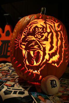 Detroit Tigers repin'