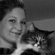Die Sibirische Katze – DIE Lösung für Allergiker?
