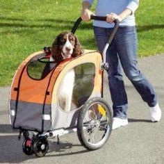 Pet strollers help #Tripawds big and small get out with the rest of the pack. Find recommendations in the Gear Blog! http://tri.pet/1TelykL