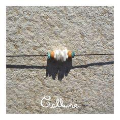 Collier de cuir brun avec éclats de coquillage, turquoises et perles en bois naturel avec fermoir - 3,50 € https://www.alittlemarket.com/collier/fr_collier_cuir_brun_eclats_coquillage_turquoise_perles_bois_naturel_fermoir_-18918464.html ▸▹ Caractéristiques ◃◂ Réalisé à la main Longueur du collier : 36,6 cm  /!\ Veillez à vérifier que la taille du collier vous convient !