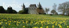 Inveraray Castle | An Iconic Scottish Castle in Argyll, Scotland - Inveraray Castle