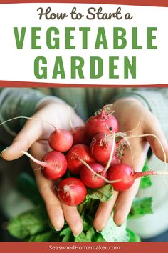 Nothing is more DIY than a vegetable garden. The first thing you need to know is anyone can have a green thumb. It's really all about paying attention to the plants in the garden. Follow these simple steps to start your very own vegetable garden. #vegetablegardeningtips Starting A Vegetable Garden, Veg Garden, Vegetable Gardening, Gardening For Beginners, Sewing For Beginners, Plants For Raised Beds, Luxury Garden Furniture, Ancient Chinese Architecture, Brick Patterns Patio