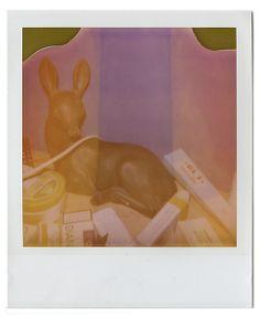 bambi expired polaroid