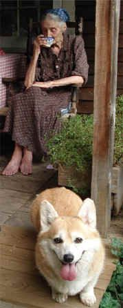 Tasha Tudor - what to love most - her famous gardens, her fairy tales, her corgies, her fairy tales about corgies...