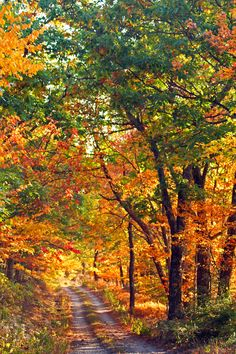 Country road in autumn (West Virginia) from Wikimedia
