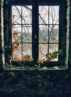 Beautiful windows, petit plaisir :)