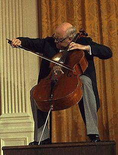 VIOLONCHELO.  Instrumento de arco provisto de cuatro cuerdas,cuyos caracteres responden a la naturaleza de los miembros de la familia del violín, en la cual desempeña la función de bajo, afinado a la octava grave de la viola.