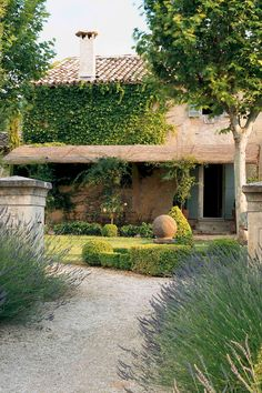 Garden at Villa Grenache - Bastide de Marie : luxury property with hotel services in Provence (France)