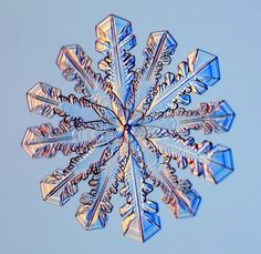12-Sided Snowflakes by Kenneth G. Libbrecht, Caltech: Sometimes capped columns form with a twist, a 30-degree twist to be specific.  The two end-plates are both six-branched crystals, but one is rotated 30 degrees relative to the other.  This is a form of crystal twinning, in which two crystals grow joined in a specific orientation. #Snowflake #12_Sided_Snowflake