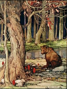 """Illustration for """"The old willow-tree, and other stories"""", 1921 by Carl Ewald; illo by Helen Jacobs Art And Illustration, Illustrations Posters, Photo D Art, Fairytale Art, Bear Art, Willow Tree, Nocturne, Oeuvre D'art, Illustrators"""