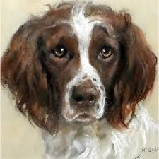 Image result for paintings springer spaniel