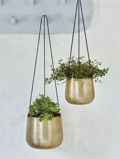Our striking antique gold planters are perfect for displaying your favourite plants.