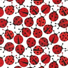 Ann Kelle - Urban Zoologie Part 2 - Lady Bugs in Red