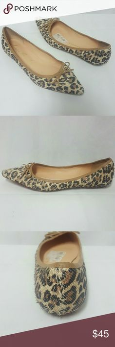 Luiza Barcelos snake embossed leather flats Sz 7 Luiza barcelos Flats in excellent used condition. Size 7, leather. Thank you Luiza Barcelos  Shoes Flats & Loafers