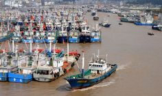 Fishing boats berth in Zhoushan port in eastern China to avoid the powerful typhoon