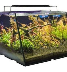 """This is not your traditional flat front square or cube tank. This is a well-designed Full View Aquarium. The angled front allows the user to have a larger viewing area inside the tank when placed at the same level with a flat front tank. No more bending down to enjoy the life inside the aquarium. The Full View aquarium offers the Maximum viewing area in its class."""