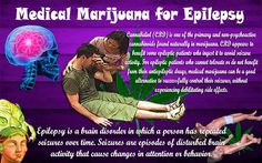 Cannabidiol(CBD) is one of the primary and non-psychoactive cannabinoids found naturally in marijuana. CBD appears to benefit some epileptic patients