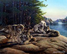 Artist Al Agnew Unframed Wildlife wolf Pack Print Wolf Ridge | WildlifePrints.com