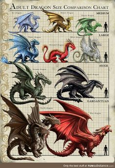 Different Dragons. Art work by Anne Stokes Dragon Fantasy Myth Mythical Mystical Legend Dragons Wings Sword Sorcery Art Magic Drache dragon drago dragon Дракон drak dragão Dragon Artwork, Wings Of Fire, Mythological Creatures, Magical Creatures, Mystical Creatures Drawings, Creature Design, Fantasy Characters, Spyro Characters, Dungeons And Dragons