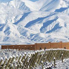 Conheça roteiros para tomar vinho em vinícolas de Argentina, Chile e Uruguai - 30/07/2015 - Turismo - Folha de S.Paulo