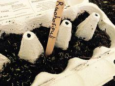 Munakennokasvatus   lasten   askartelu   kesä   käsityöt   koti   kierrätys   puutarha   kasvattaminen   DIY ideas   kid crafts   summer   recycling   garden   planting   Pikku Kakkonen