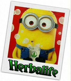 HAVE FUN! Herbalife = FUN, SIMPLE, MAGICAL! SASA INDEPENDENT HERBALIFE DISTRIBUTOR since 1994 https://www.goherbalife.com/goherb/ Call USA: +1214 329 0702 Italia: +39- 346 24 52 282 Deutschland: +49- 5233 70 93 696 Skype: sabrinaefabio Add me at Facebook: http://www.facebook.com/sasa.sieht