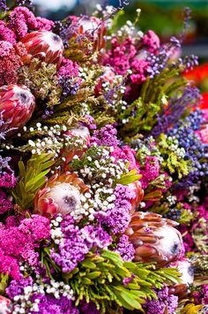 Would just love to indulge in a slow stroll around Columbia Road Flower Market on a Sunday morning - almost makes me want to go and live in London