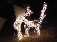 Second String Reindeer: Fornication Its where little lawn ornaments come from