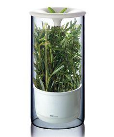 Look at this #zulilyfind! Art & Cook Fresh Herb Keeper by Art & Cook #zulilyfinds