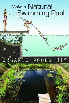 Natural Swimming Pools are kept clean by plants, not chemicals and are healthy environments for both people and wildlife. This film is a guide to making your own. David… backyard diy Watch Make a Natural Swimming Pool Online Swimming Pool Pond, Natural Swimming Ponds, Natural Pond, Ponds Backyard, Backyard Landscaping, Landscaping Ideas, Ideas De Piscina, Piscine Diy, Living Pool