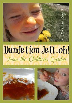 Dandelion Jell-oh!  From the Children's Garden - here's how to make your own gelatin snack using dandelion blossoms - it tastes like sunshine!  www.homesteadlady.com