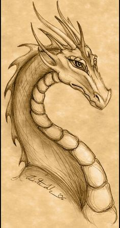 25 Ideas Tattoo Dragon Fire Mythical Creatures For 2019 - Art World Fire Dragon, Dragon Art, Drawing Sketches, Cool Drawings, Dragon Drawings, Drawings Of Dragons, Detailed Drawings, Sketching, Fantasy Dragon