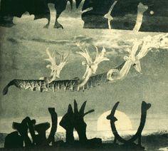hannah hoch sea serpent 1937