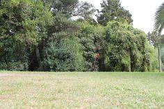 L1M1AP1 Landscape shot taken automatic mode lying down Aperture:5.6 ISO:100 Shutter speed:1/100