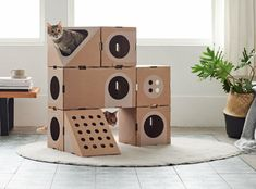 A Cat Thing is a cat furniture made from cardboard boxes which changes the way cat house, cat scratching post and cat tower are used indoors. Old Wine Bottles, Wine Bottle Crafts, Cat Gym, Cat House Diy, Cat Playground, Kitty Games, Cat Scratching Post, Pet Furniture, Dog Beds