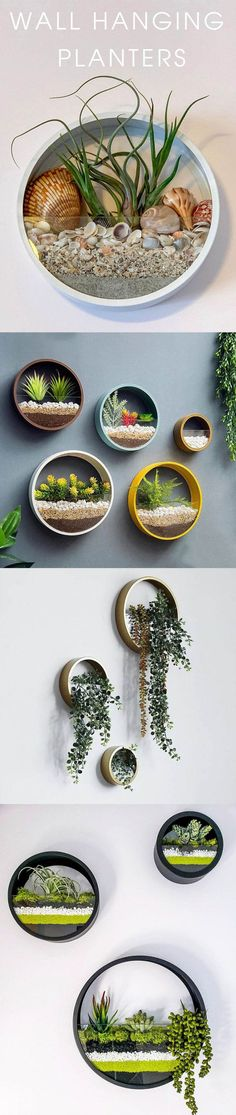 Hanging Round Planter Hanging Round Planter Want something special in your home decoration Check out these Hanging Round Planter Wall Planter Hanging Terrarium Geometric Terrarium Wall Vase Wall Plant Holder Hanging Wall Planter Florarium Hanging Wall Planters, Diy Wall Planter, Hanging Terrarium, Succulent Planter Diy, Hanging Succulents, Decorative Planters, Small Succulents, Succulents In Containers, Diy Planters