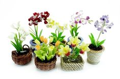 Makes for great favors for my 10 yr vow renewal!  Miniature Polymer Clay Flowers Supplies Orchids by Mycraftgarden, $39.50