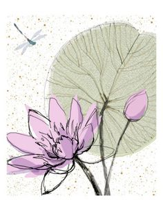 Abstract Lily Pad with Dragonfly Art Print