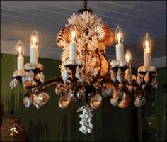 chandelier   seashells love the dark finish. South African Chandelier