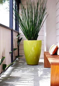 La maceta de color llamativo, es el toque divertido del diseño. desire to inspire - desiretoinspire.net - Putting life in the garden with Garden Life