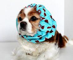 Lucky Ladybug Dog Snood / 100 Donation to Lucky by daydogdesigns, $10.00