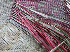 Alixene Curtis - whaariki in progression Adding extra whenu Flax Weaving, Maori Designs, Maori Art, Weaving Techniques, Basket, Tapestry, Embroidery, Creative, Weave